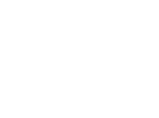 Zamaleev Production